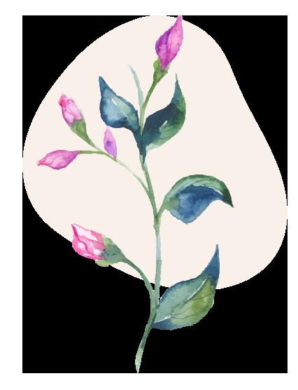 rose vine 1